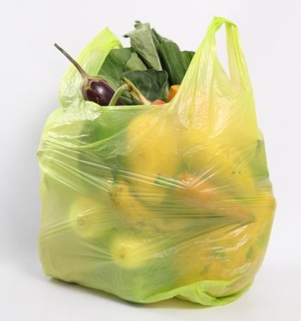 国内のプラ動向 –レジ袋の有料化義務を検討–