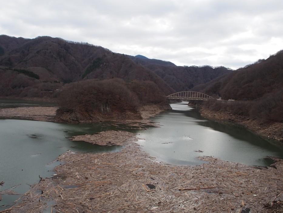 流木によるダム堤体被害