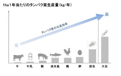 食用肉に替わるタンパク質